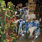 blue_reindeer_2012