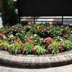 exterior planting_4-30-14