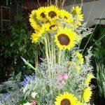 office-floral-arrangements