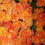 orange flowers_corp