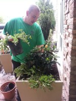 exterior containerized plantings